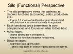 silo functional perspective