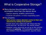 what is cooperative storage