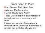 from seed to plant13