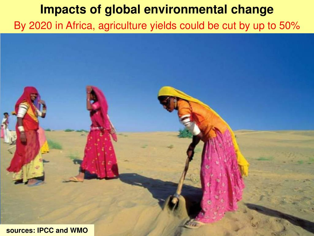 Impacts of global environmental change