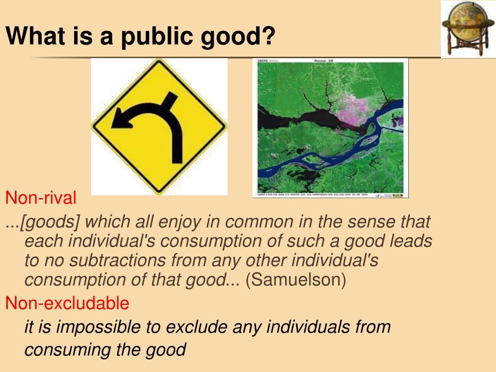 What is a public good?