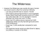 the wilderness35
