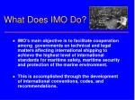 what does imo do