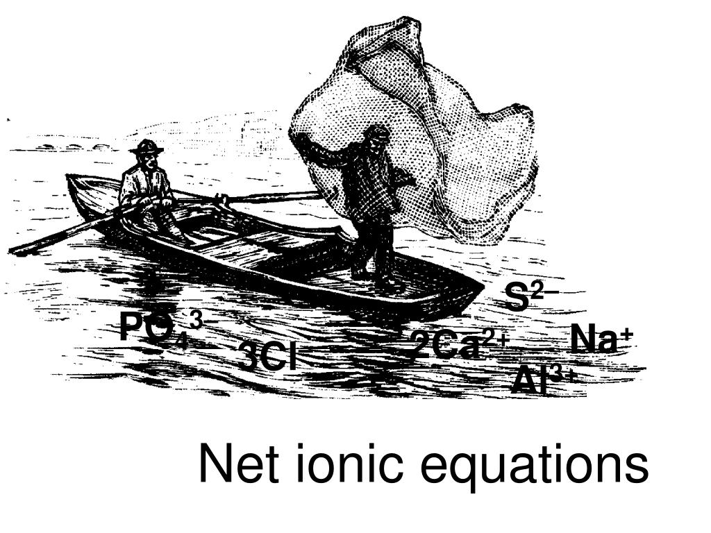 net ionic equations l.