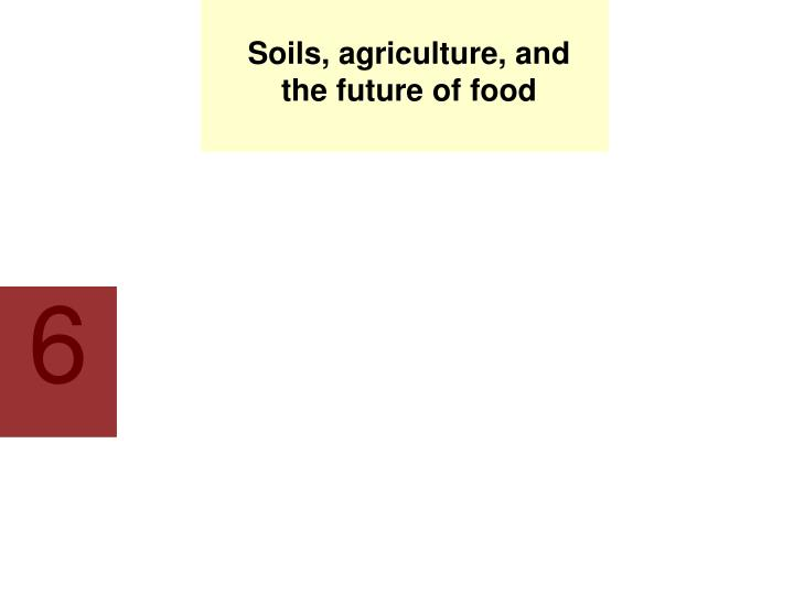soils agriculture and the future of food n.