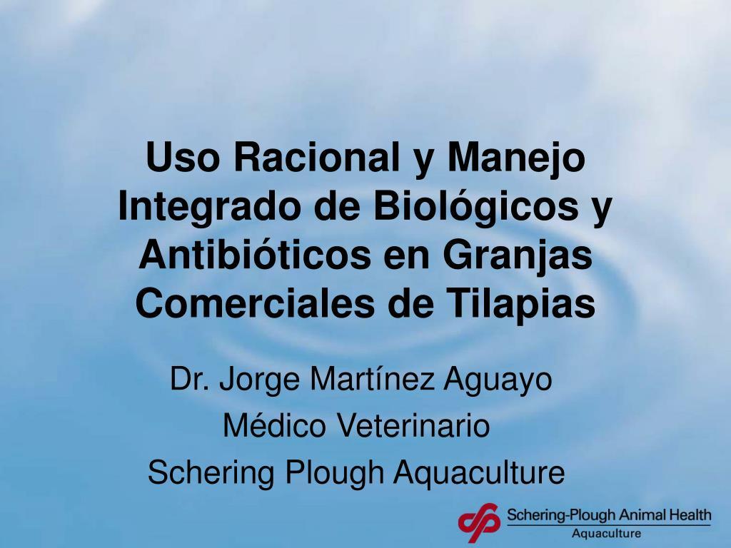 uso racional y manejo integrado de biol gicos y antibi ticos en granjas comerciales de tilapias l.