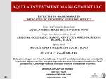 aquila investment management llc