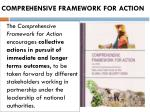 comprehensive framework for action