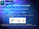 what are enzymes