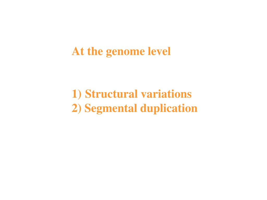 At the genome level
