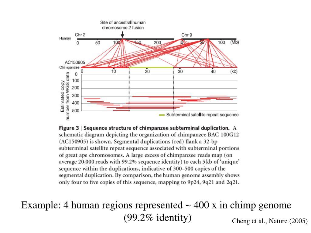 Example: 4 human regions represented ~ 400 x in chimp genome