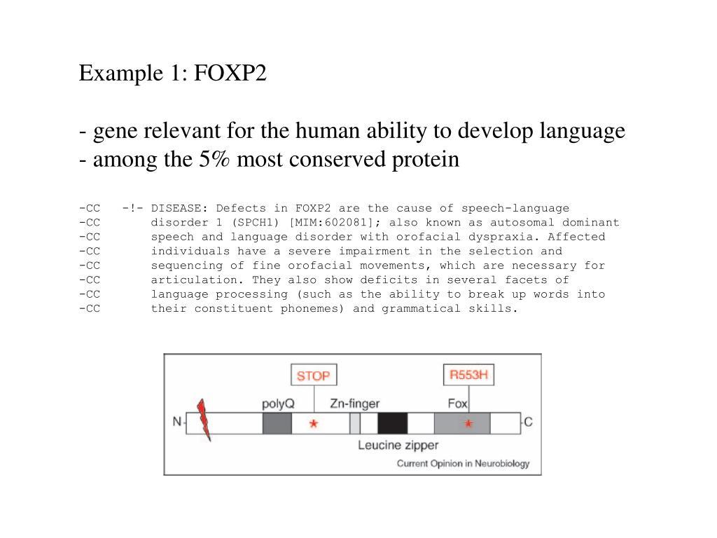 Example 1: FOXP2