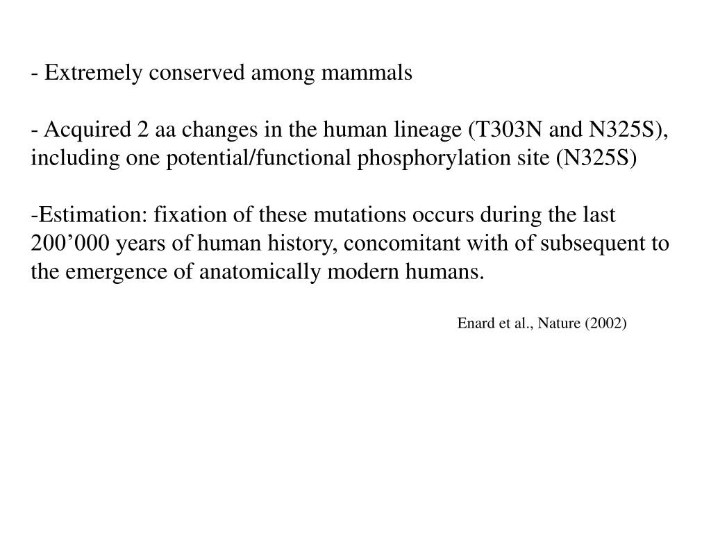 Extremely conserved among mammals