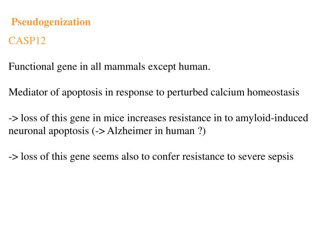 Pseudogenization