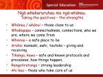 ng whakaruruhau mo ng wh nau taking the positives the strengths