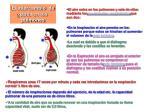 el intercambio de gases en los pulmones
