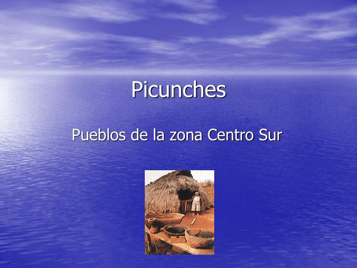 Picunches