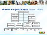 estrutura organizacional decreto n 5 550 2005