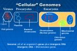cellular genomes