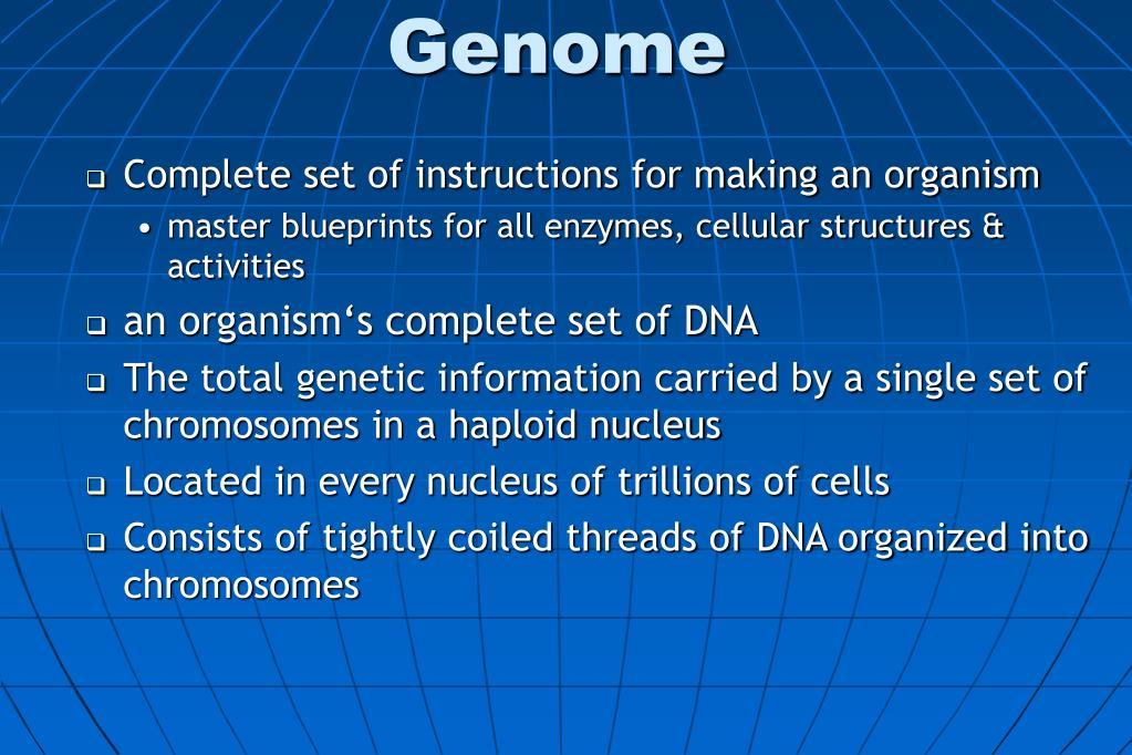 genome l.