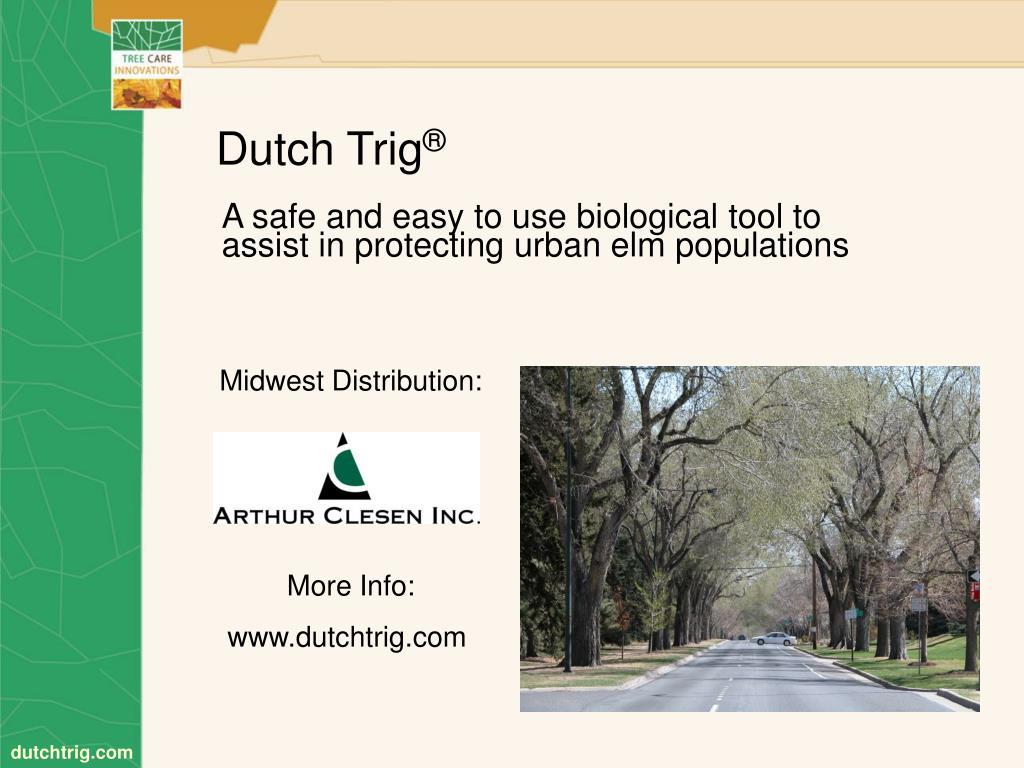 Dutch Trig