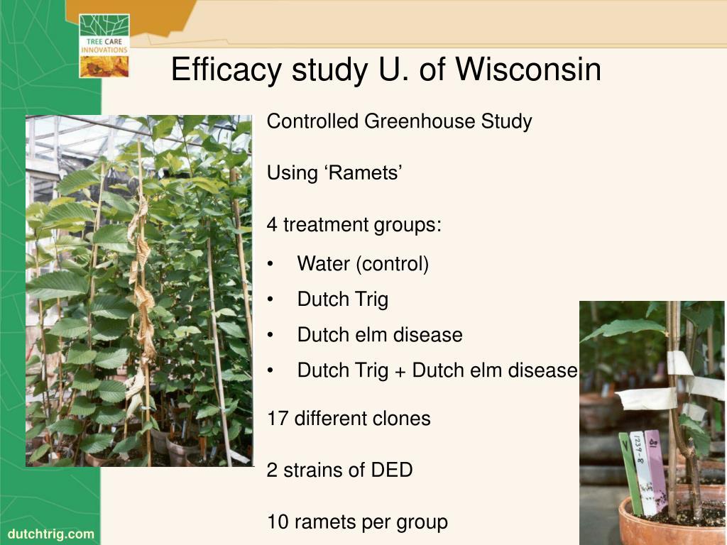 Efficacy study U. of Wisconsin