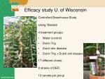 efficacy study u of wisconsin