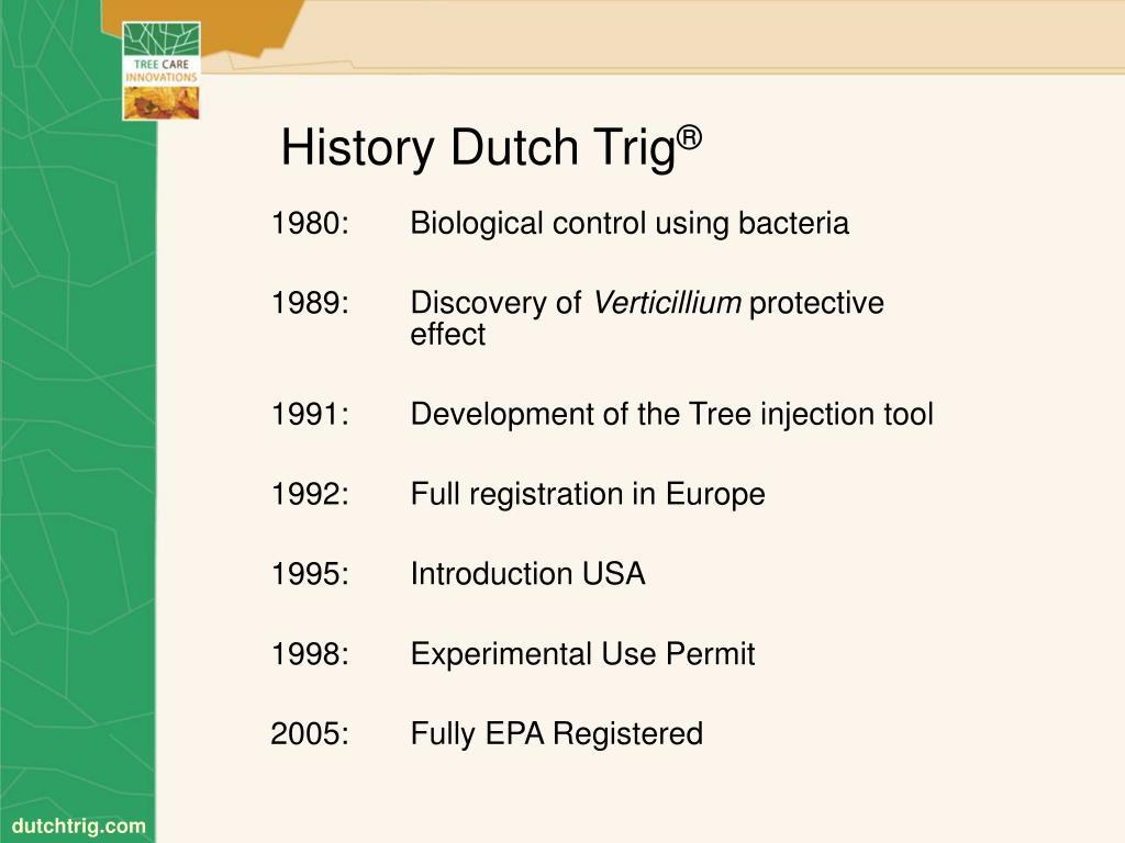 History Dutch Trig