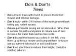 do s don ts trees