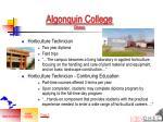algonquin college ottawa