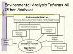 environmental analysis informs all other analyses