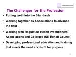 the challenges for the profession