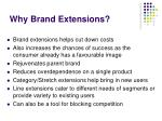why brand extensions67