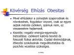 k v rs g elh z s obesitas17