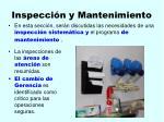 inspecci n y mantenimiento113
