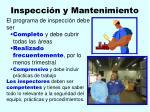 inspecci n y mantenimiento117