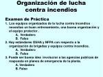 organizaci n de lucha contra incendios172