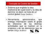 concepto de control de gesti n19