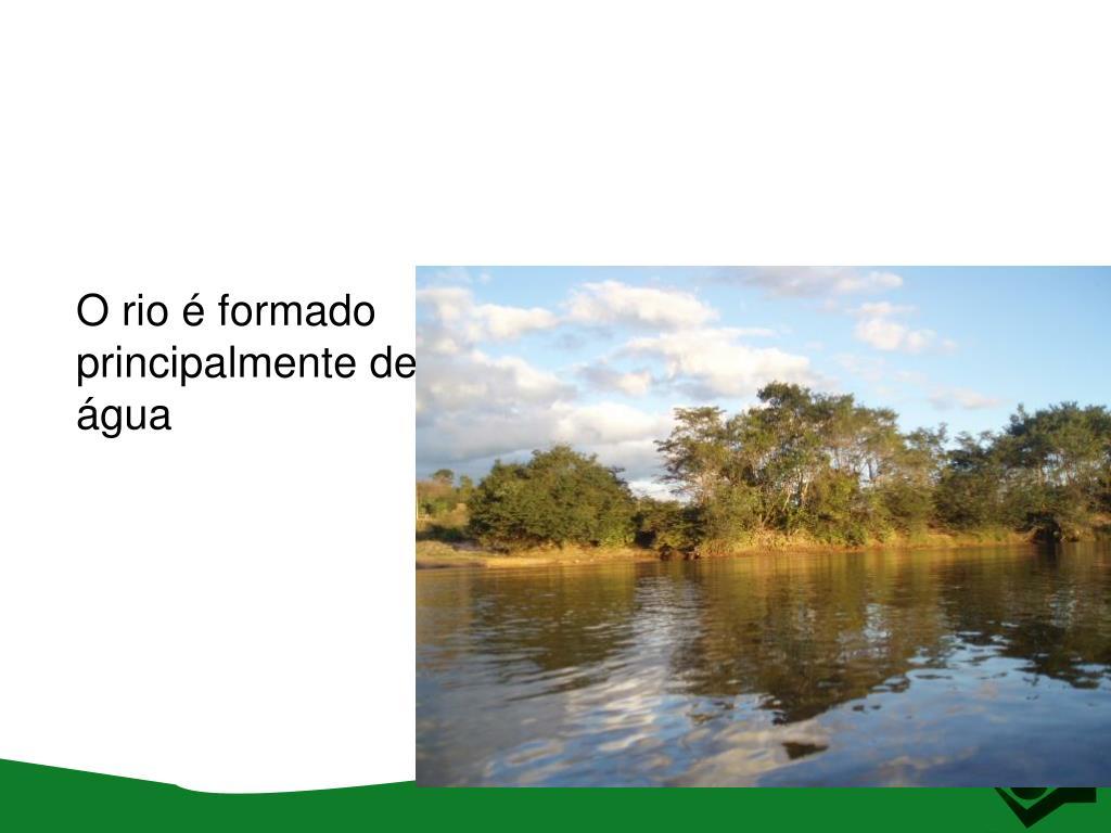 O rio é formado principalmente de água