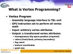 what is vertex programming1