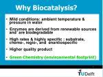 why biocatalysis