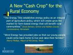 a new cash crop for the rural economy
