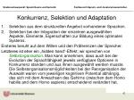 konkurrenz selektion und adaptation