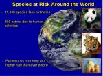 species at risk around the world
