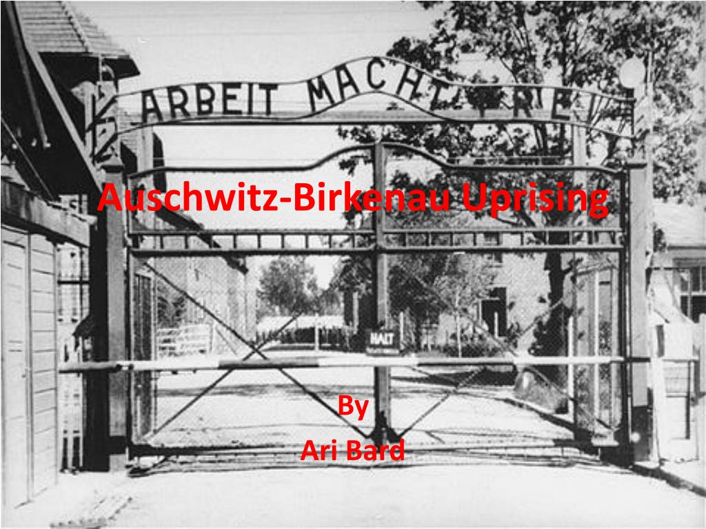 auschwitz birkenau uprising l.
