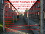 background of auschwitz birkenau
