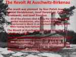 the revolt at auschwitz birkenau