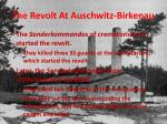 the revolt at auschwitz birkenau7