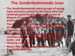 the sonderkommando jews