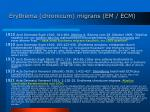 erythema chronicum migrans em ecm